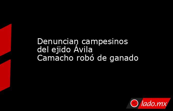 Denuncian campesinos del ejido Ávila Camacho robó de ganado. Noticias en tiempo real