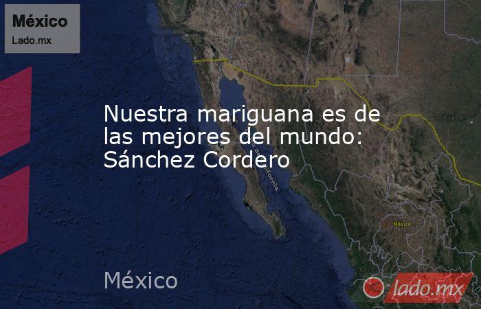 Nuestra mariguana es de las mejores del mundo: Sánchez Cordero. Noticias en tiempo real