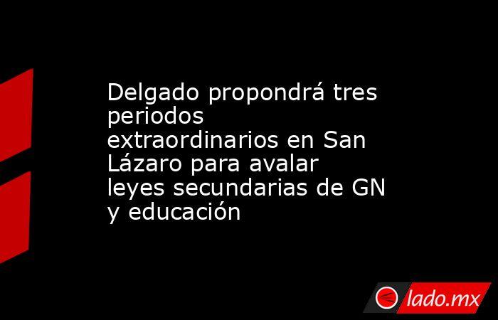 Delgado propondrá tres periodos extraordinarios en San Lázaro para avalar leyes secundarias de GN y educación. Noticias en tiempo real
