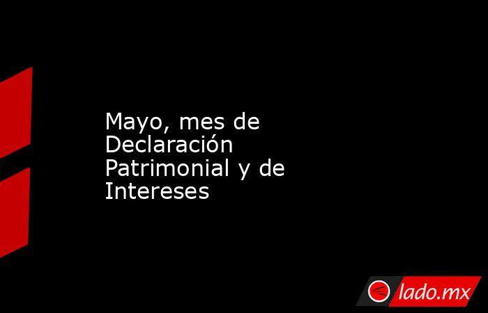 Mayo, mes de Declaración Patrimonial y de Intereses. Noticias en tiempo real