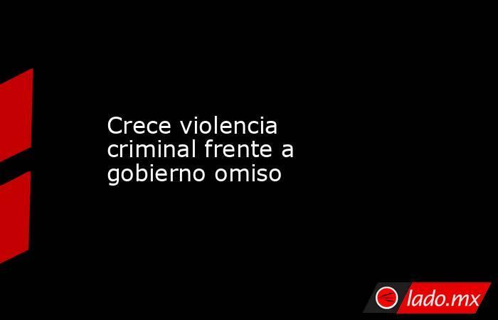 Crece violencia criminal frente a gobierno omiso . Noticias en tiempo real