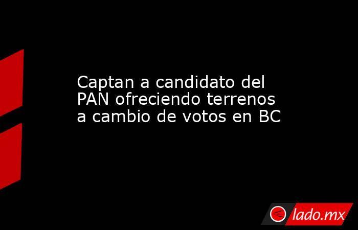 Captan a candidato del PAN ofreciendo terrenos a cambio de votos en BC. Noticias en tiempo real