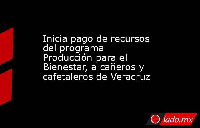 Inicia pago de recursos del programa Producción para el Bienestar, a cañeros y cafetaleros de Veracruz. Noticias en tiempo real