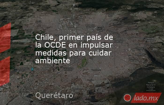 Chile, primer país de la OCDE en impulsar medidas para cuidar ambiente. Noticias en tiempo real