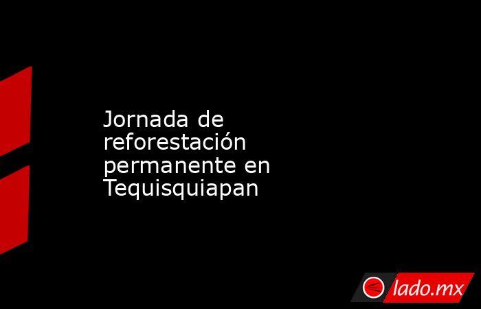 Jornada de reforestación permanente en Tequisquiapan. Noticias en tiempo real