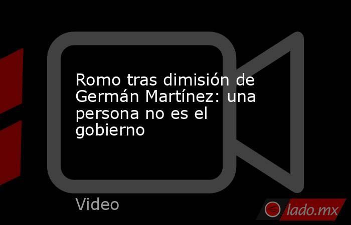 Romo tras dimisión de Germán Martínez: una persona no es el gobierno. Noticias en tiempo real