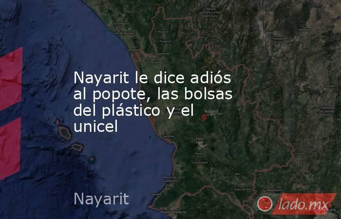 Nayarit le dice adiós al popote, las bolsas del plástico y el unicel . Noticias en tiempo real