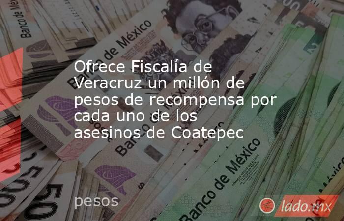 Ofrece Fiscalía de Veracruz un millón de pesos de recompensa por cada uno de los asesinos de Coatepec. Noticias en tiempo real