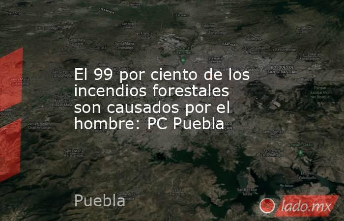 El 99 por ciento de los incendios forestales son causados por el hombre: PC Puebla. Noticias en tiempo real