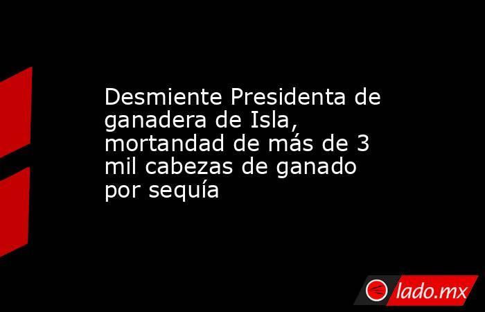 Desmiente Presidenta de ganadera de Isla, mortandad de más de 3 mil cabezas de ganado por sequía. Noticias en tiempo real