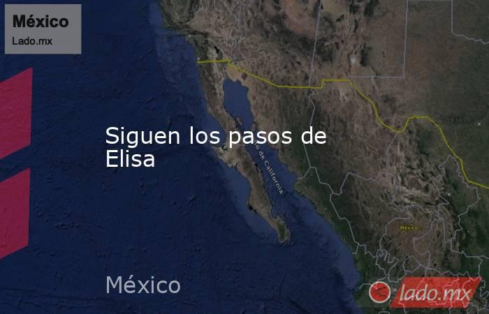 Siguen los pasos de Elisa. Noticias en tiempo real