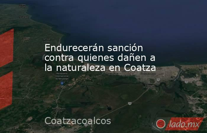 Endurecerán sanción contra quienes dañen a la naturaleza en Coatza. Noticias en tiempo real