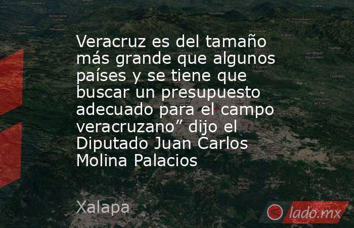 """Veracruz es del tamaño más grande que algunos países y se tiene que buscar un presupuesto adecuado para el campo veracruzano"""" dijo el Diputado Juan Carlos Molina Palacios. Noticias en tiempo real"""