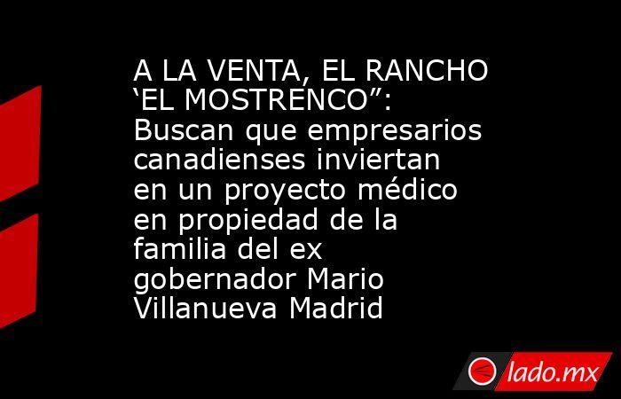 """A LA VENTA, EL RANCHO 'EL MOSTRENCO"""": Buscan que empresarios canadienses inviertan en un proyecto médico en propiedad de la familia del ex gobernador Mario Villanueva Madrid. Noticias en tiempo real"""
