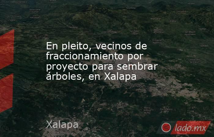 En pleito, vecinos de fraccionamiento por proyecto para sembrar árboles, en Xalapa. Noticias en tiempo real