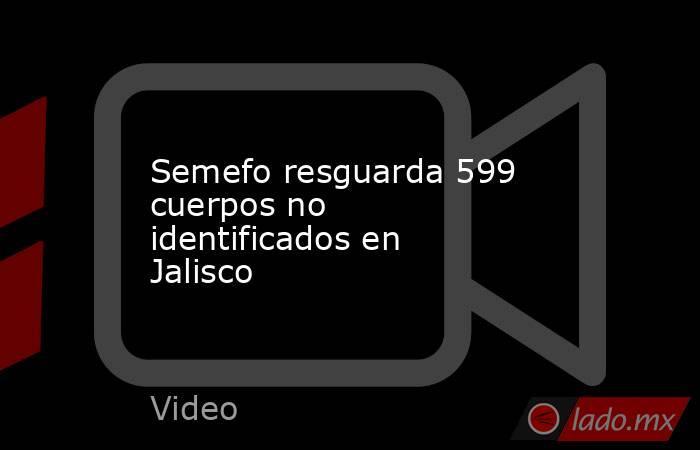 Semefo resguarda 599 cuerpos no identificados en Jalisco. Noticias en tiempo real
