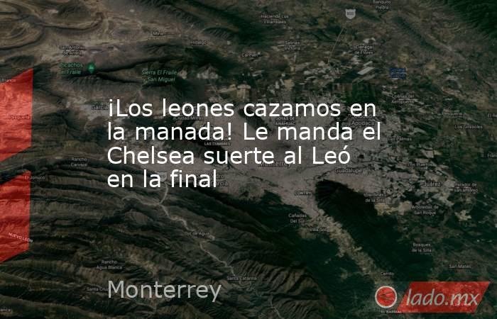 ¡Los leones cazamos en la manada! Le manda el Chelsea suerte al Leó en la final. Noticias en tiempo real