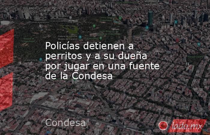 Policías detienen a perritos y a su dueña por jugar en una fuente de la Condesa. Noticias en tiempo real