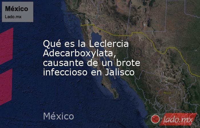 Qué es la Leclercia Adecarboxylata, causante de un brote infeccioso en Jalisco. Noticias en tiempo real