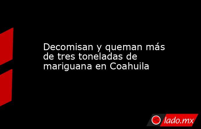 Decomisan y queman más de tres toneladas de mariguana en Coahuila. Noticias en tiempo real