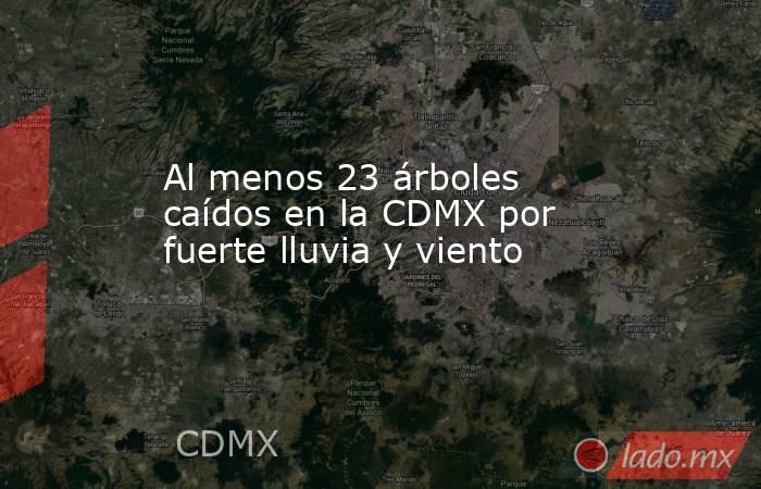 Al menos 23 árboles caídos en la CDMX por fuerte lluvia y viento. Noticias en tiempo real