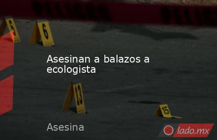 Asesinan a balazos a ecologista. Noticias en tiempo real
