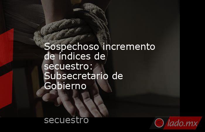 Sospechoso incremento de índices de secuestro: Subsecretario de Gobierno. Noticias en tiempo real