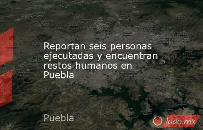 Reportan seis personas ejecutadas y encuentran restos humanos en Puebla. Noticias en tiempo real