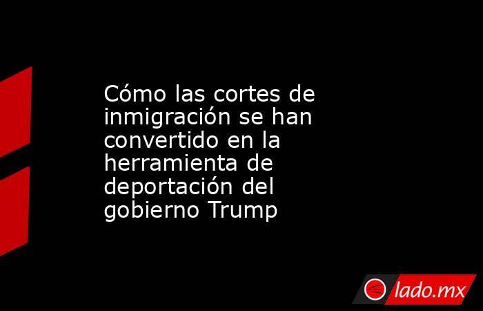 Cómo las cortes de inmigración se han convertido en la herramienta de deportación del gobierno Trump. Noticias en tiempo real