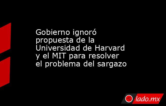 Gobierno ignoró propuesta de la Universidad de Harvard y el MIT para resolver el problema del sargazo. Noticias en tiempo real