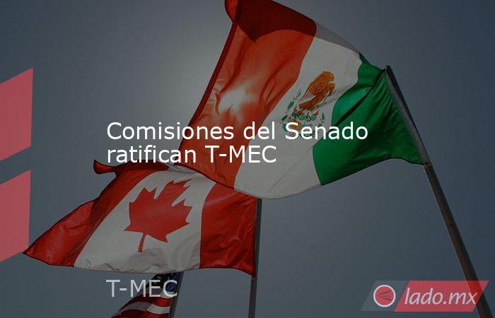 Comisiones del Senado ratifican T-MEC. Noticias en tiempo real