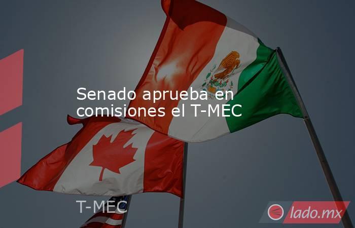 Senado aprueba en comisiones el T-MEC. Noticias en tiempo real