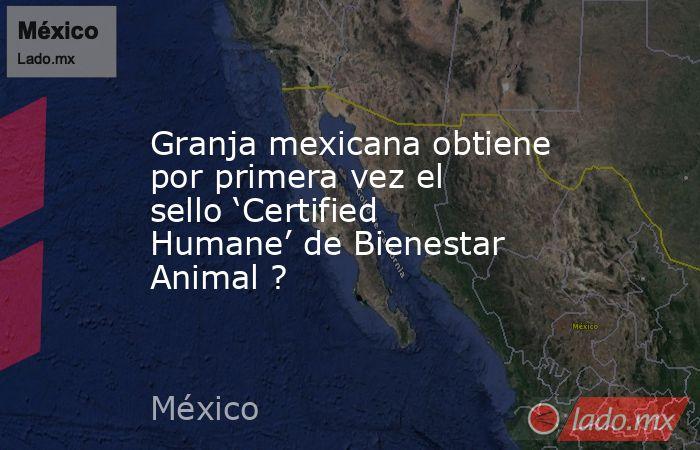 Granja mexicana obtiene por primera vez el sello 'Certified Humane' de Bienestar Animal ?. Noticias en tiempo real