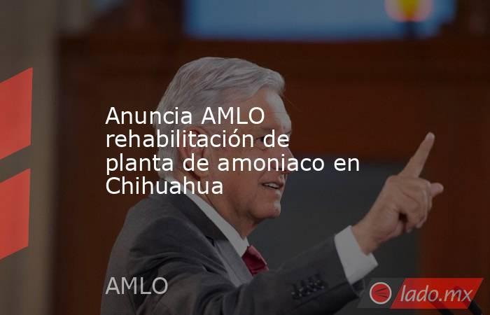 Anuncia AMLO rehabilitación de planta de amoniaco en Chihuahua. Noticias en tiempo real
