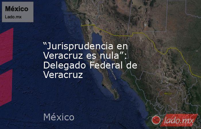 """""""Jurisprudencia en Veracruz es nula"""": Delegado Federal de Veracruz. Noticias en tiempo real"""