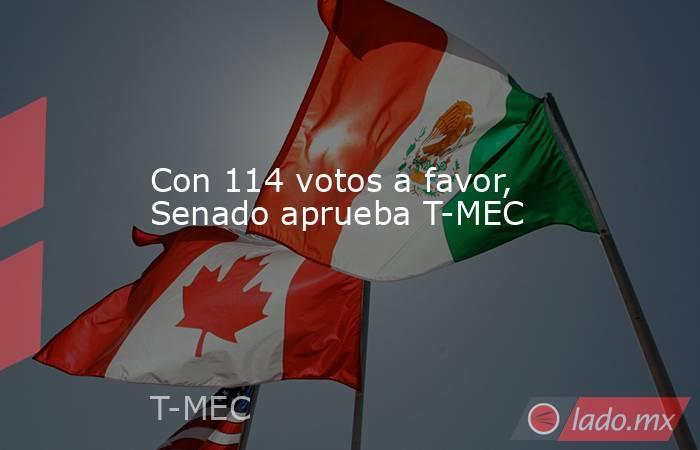 Con 114 votos a favor, Senado aprueba T-MEC. Noticias en tiempo real