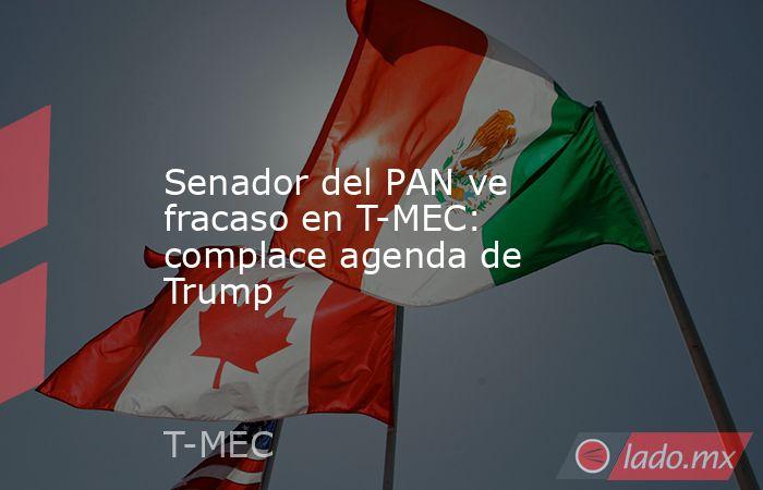 Senador del PAN ve fracaso en T-MEC: complace agenda de Trump. Noticias en tiempo real