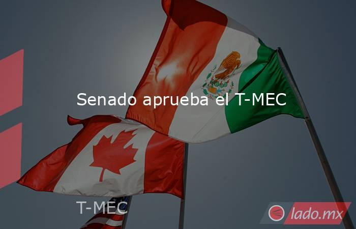 Senado aprueba el T-MEC. Noticias en tiempo real