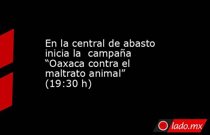 """En la central de abasto inicia la  campaña """"Oaxaca contra el maltrato animal"""" (19:30 h). Noticias en tiempo real"""