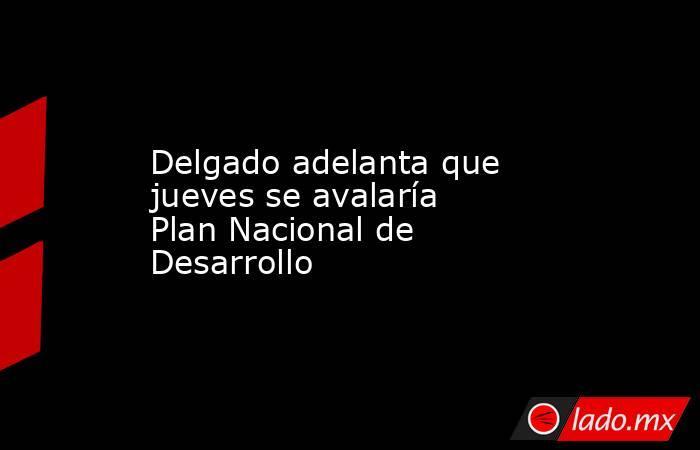 Delgado adelanta que jueves se avalaría Plan Nacional de Desarrollo. Noticias en tiempo real