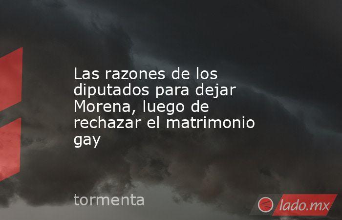 Las razones de los diputados para dejar Morena, luego de rechazar el matrimonio gay. Noticias en tiempo real