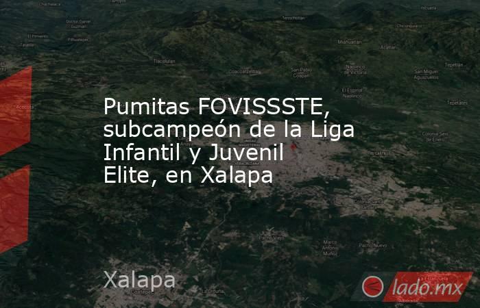 Pumitas FOVISSSTE, subcampeón de la Liga Infantil y Juvenil Elite, en Xalapa. Noticias en tiempo real