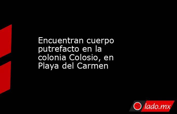 Encuentran cuerpo putrefacto en la colonia Colosio, en Playa del Carmen. Noticias en tiempo real