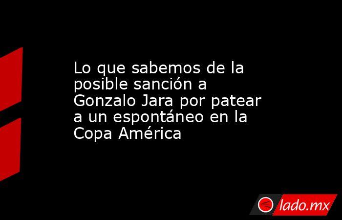 Lo que sabemos de la posible sanción a Gonzalo Jara por patear a un espontáneo en la Copa América. Noticias en tiempo real