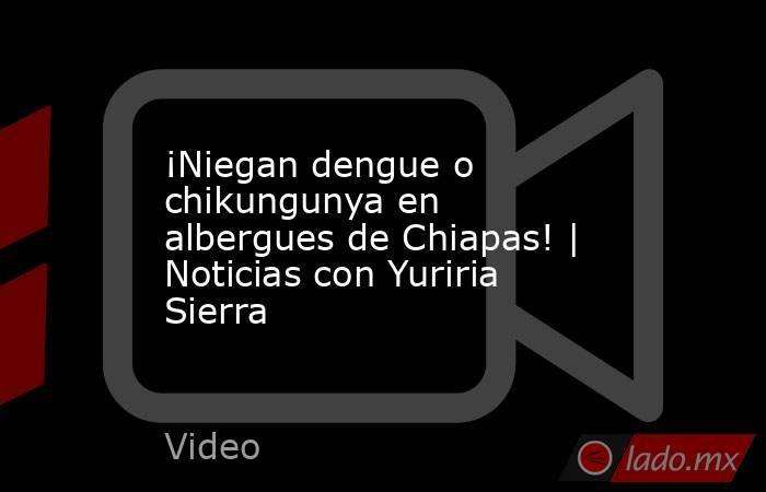 ¡Niegan dengue o chikungunya en albergues de Chiapas! | Noticias con Yuriria Sierra. Noticias en tiempo real