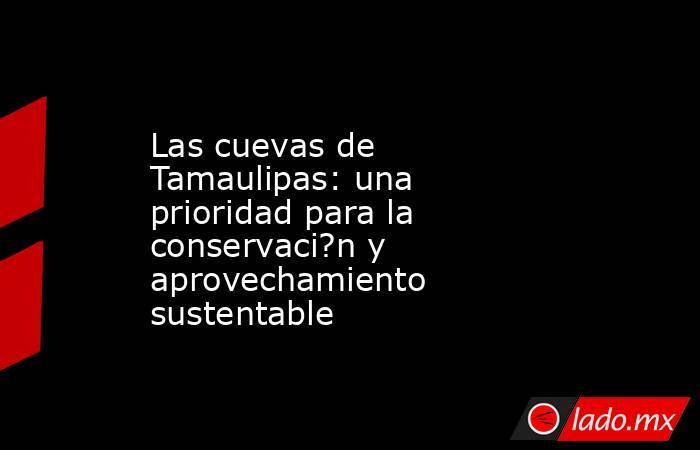 Las cuevas de Tamaulipas: una prioridad para la conservaci?n y aprovechamiento sustentable. Noticias en tiempo real