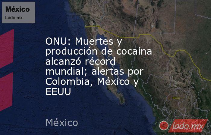 ONU: Muertes y producción de cocaína alcanzó récord mundial; alertas por Colombia, México y EEUU. Noticias en tiempo real