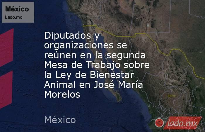 Diputados y organizaciones se reúnen en la segunda Mesa de Trabajo sobre la Ley de Bienestar Animal en José María Morelos. Noticias en tiempo real