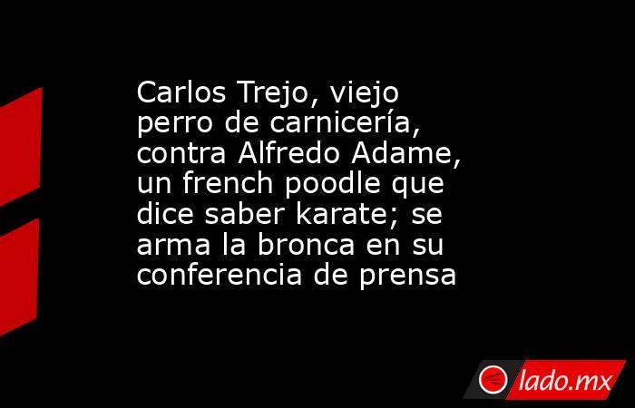 Carlos Trejo, viejo perro de carnicería, contra Alfredo Adame, un french poodle que dice saber karate; se arma la bronca en su conferencia de prensa. Noticias en tiempo real