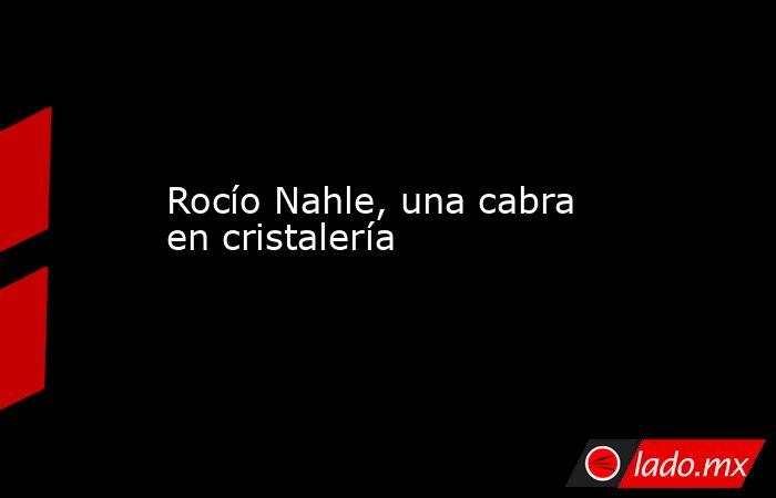 Rocío Nahle, una cabra en cristalería   . Noticias en tiempo real